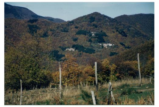 Risultati immagini per Valle degli Elfi  una casetta nel bosco